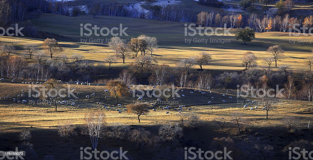 Scenery of Northern China royalty-free stock photo