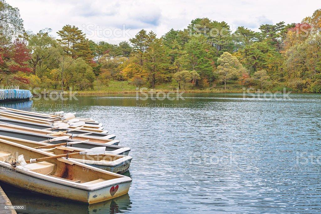 Scenery of the lakeside stock photo