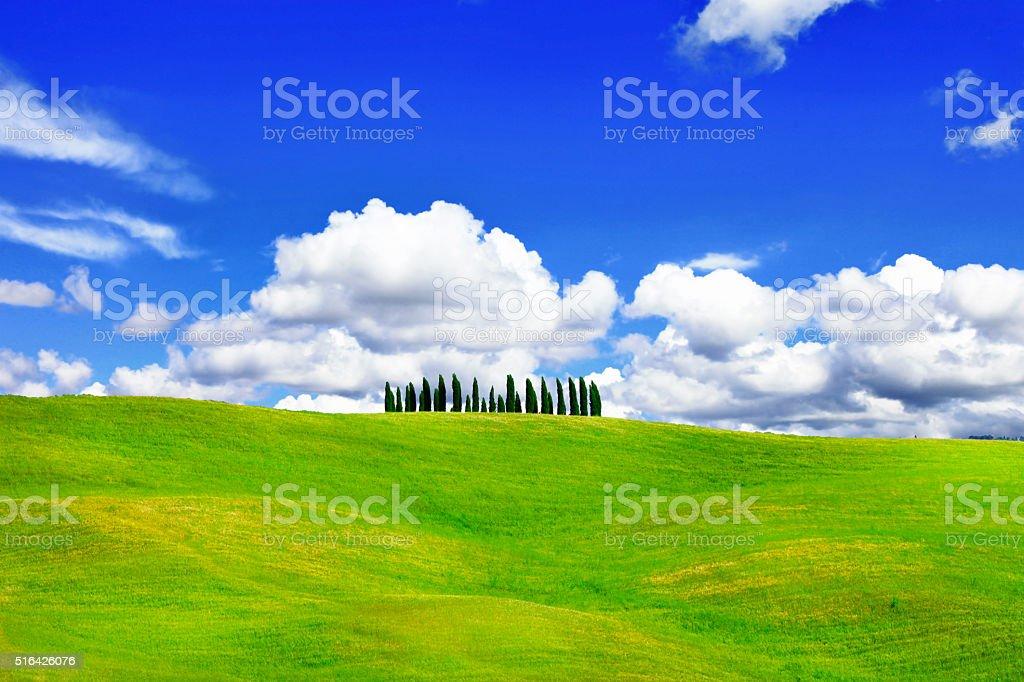 Scenery Of Tuscany,Panorama Of Countryside. stock photo