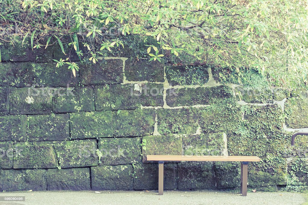 Scenery with the bench / In front of old wall stock photo