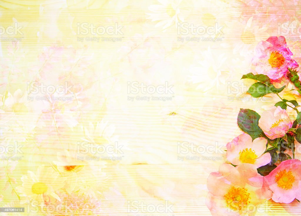 Scenic abstract floral background with wild roses made with color filters stock photo