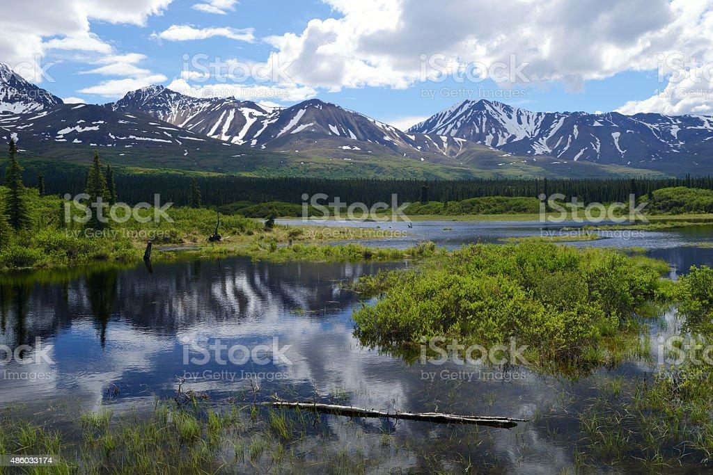 Scenic Alaska Range along Denali Highway stock photo
