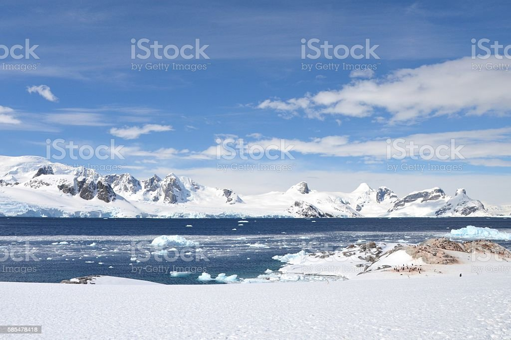 Scenic Antarctica and Penguins stock photo