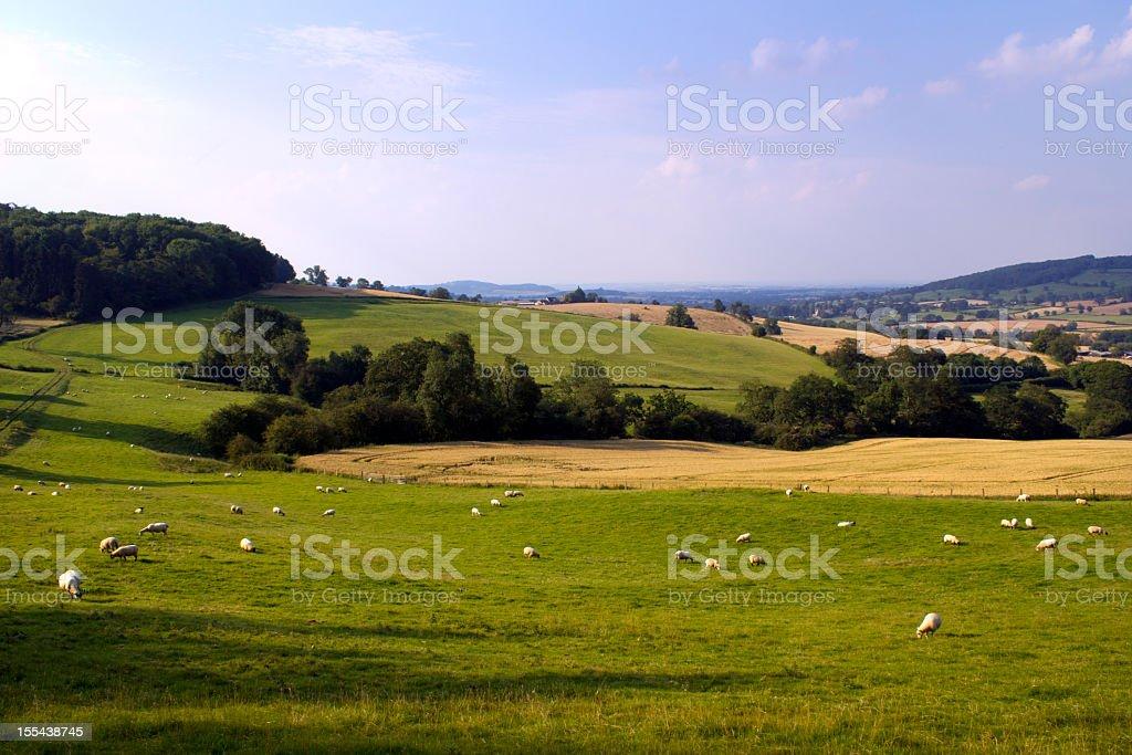 Scenic Cotswolds - near Winchcombe stock photo