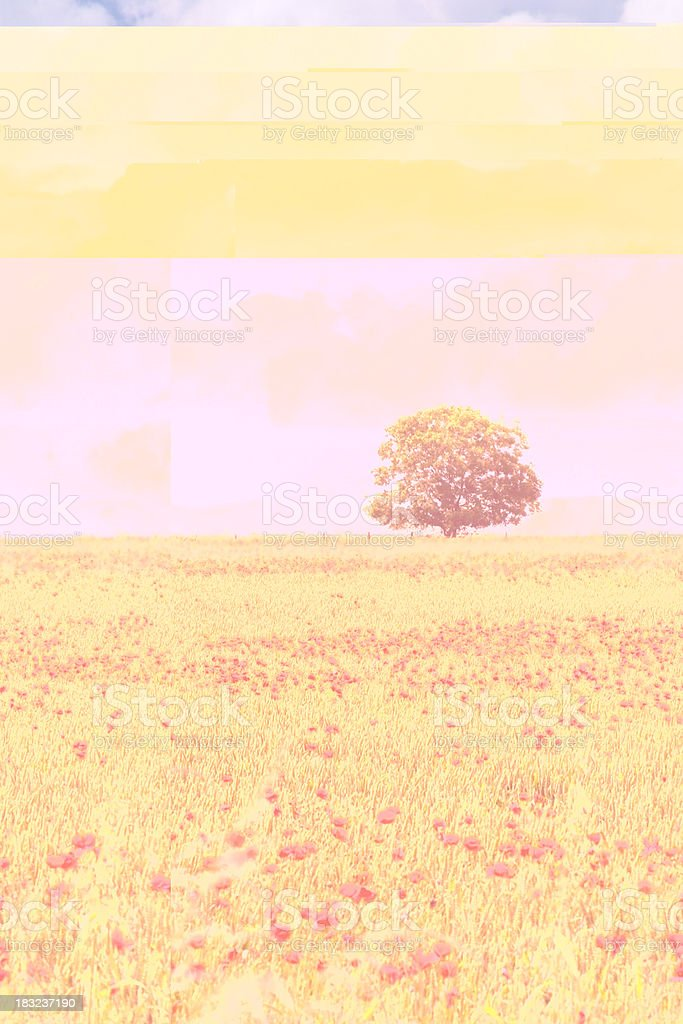 Scenic Cotswolds royalty-free stock photo