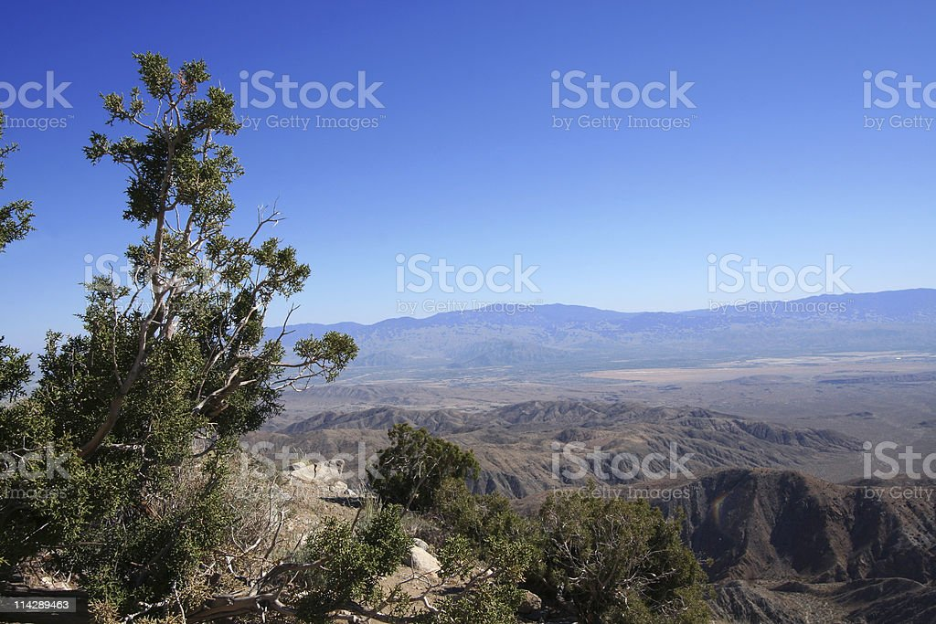 Scenic Desert and Mountain Views royalty-free stock photo
