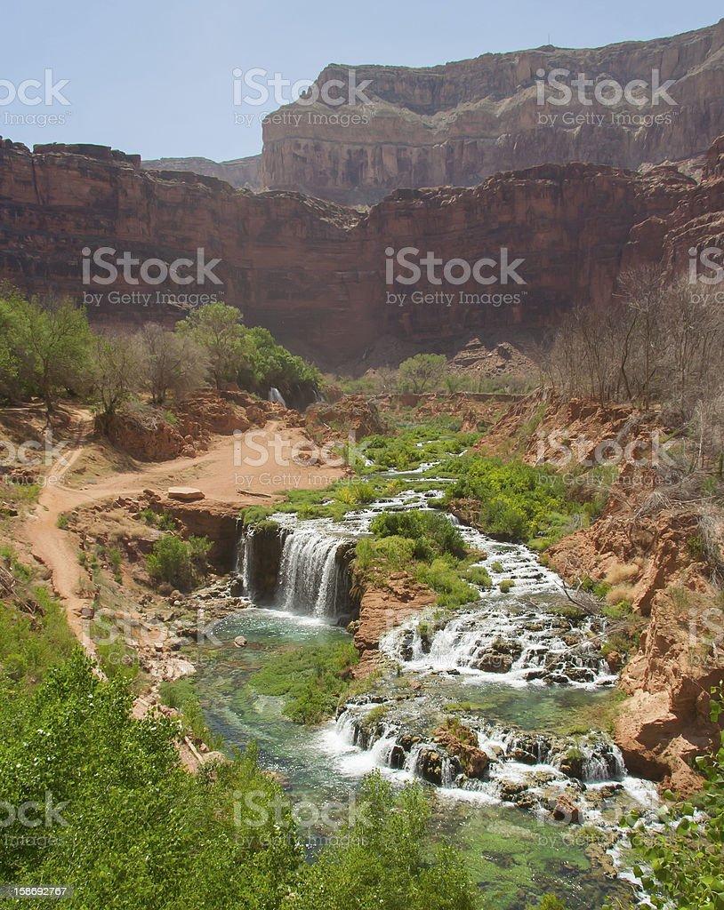 Scenic Desert Oasis royalty-free stock photo