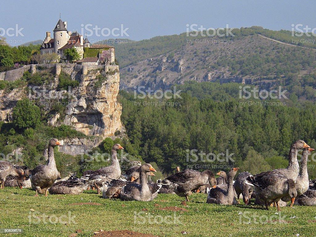 Scenic Dordogne stock photo