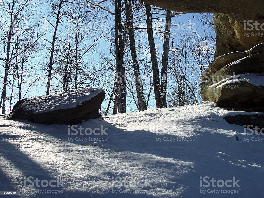 Scenic Forest & Snow royalty-free stock photo