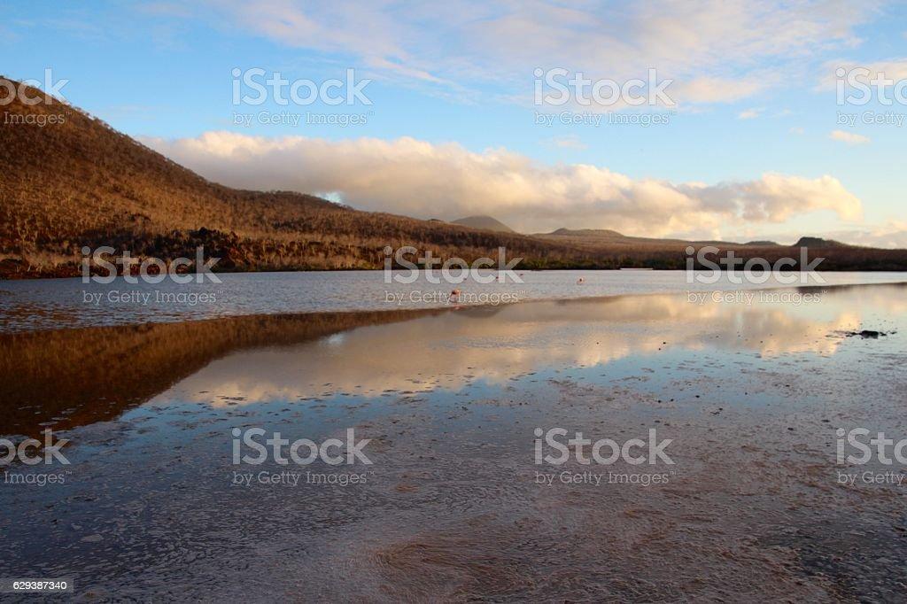Scenic Galapagos stock photo