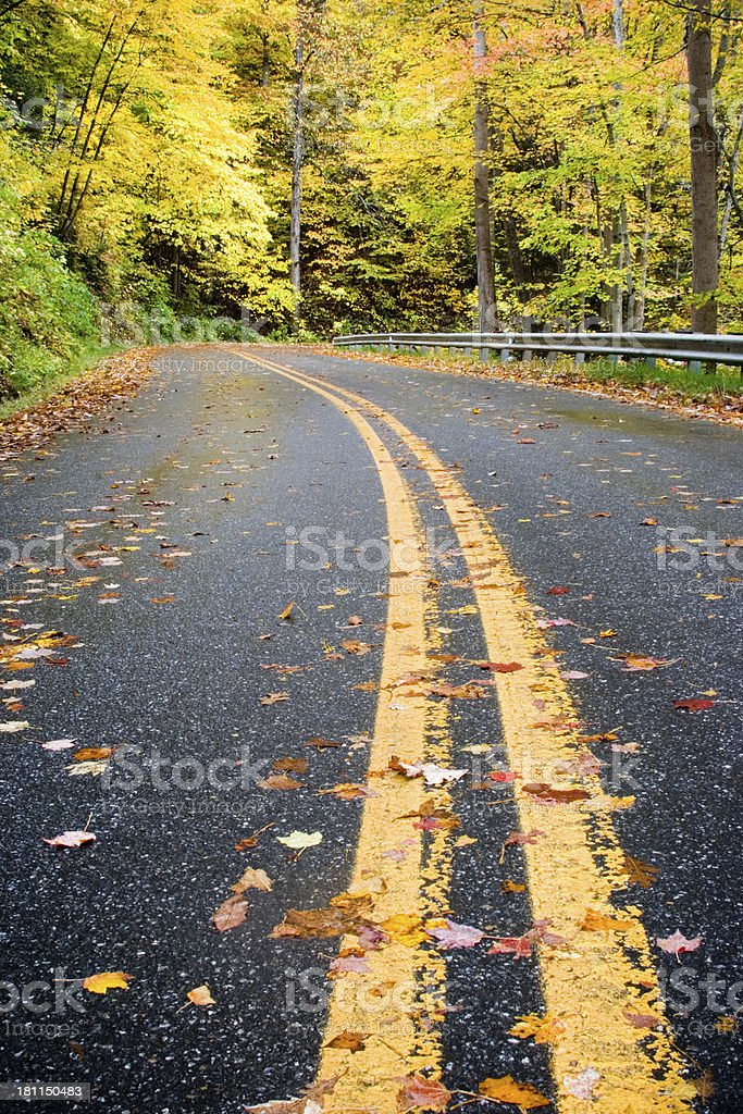Scenic Highway in Late Autumn stock photo