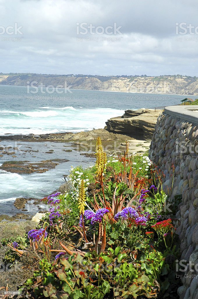Scenic La Jolla Cliffs royalty-free stock photo