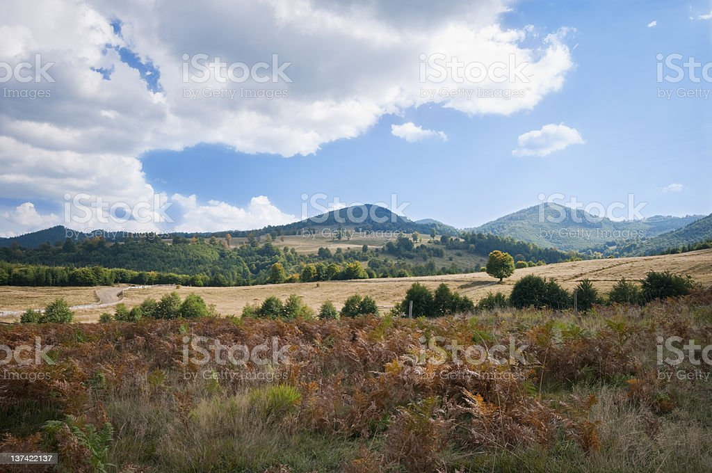 scenic landscape in the fall stock photo