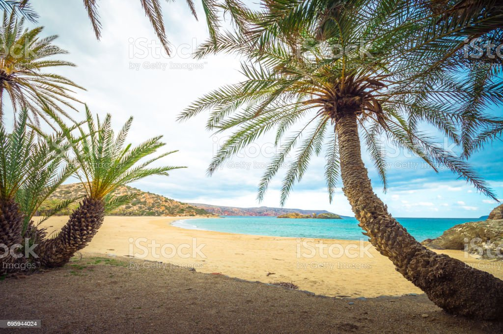Scenic landscape of palm trees, clouds and tropical beach, Vai, Crete, Greece. stock photo