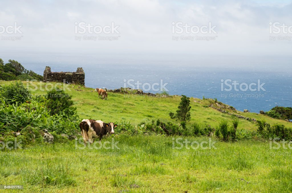 Scenic landscape of volcanic islands of Azores stock photo