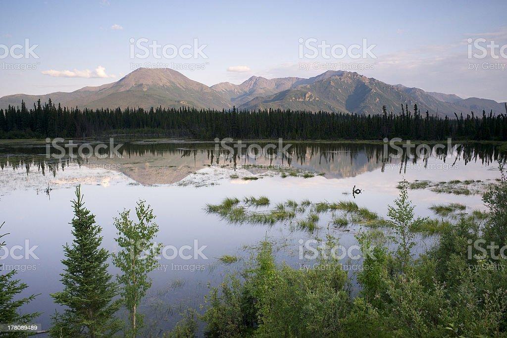 Scenic Marsh Water Panoramic Mountain Landscape Outback Alaska stock photo