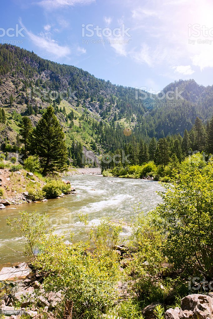 Scenic Montana Landscape River in Summer Environment stock photo