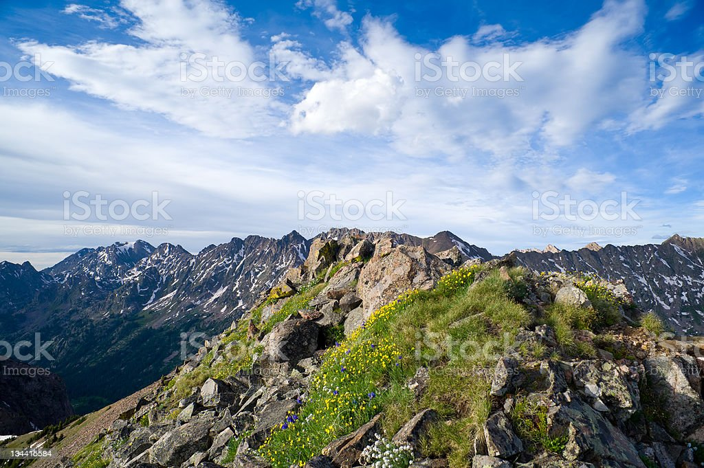 Scenic Mountain Ridge with Tundra and Wildflowers stock photo