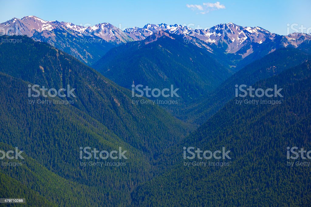 Scenic Mountain Valley Viewed From Hurricane Ridge,Olympic National Park stock photo