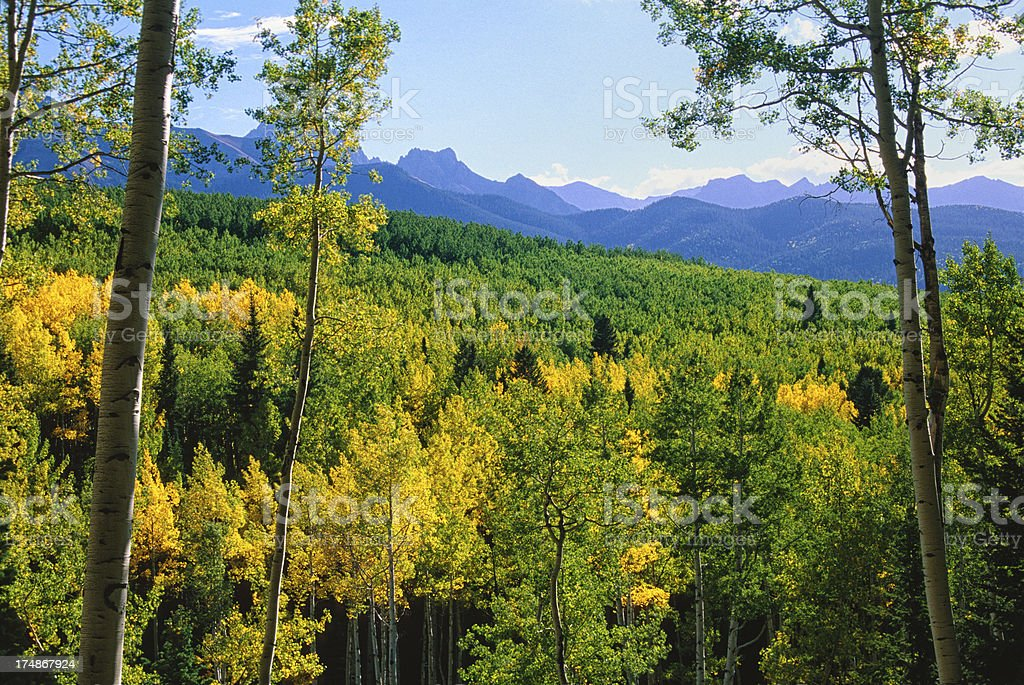 Scenic Mountains and Fall Colors royalty-free stock photo