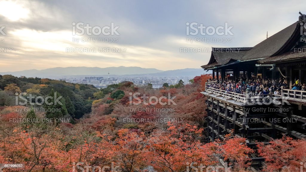 Scenic photo of red forest and japan temple stock photo