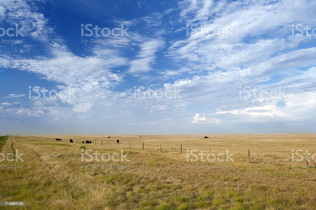 Scenic picture of a prairie with blue sky and clouds royalty-free stock photo