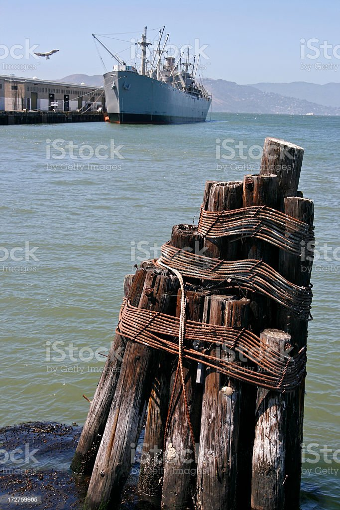 Scenic Pilings royalty-free stock photo