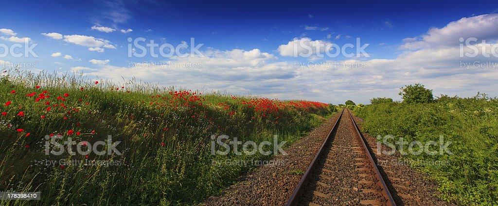 Scenic railroad in rural area royalty-free stock photo