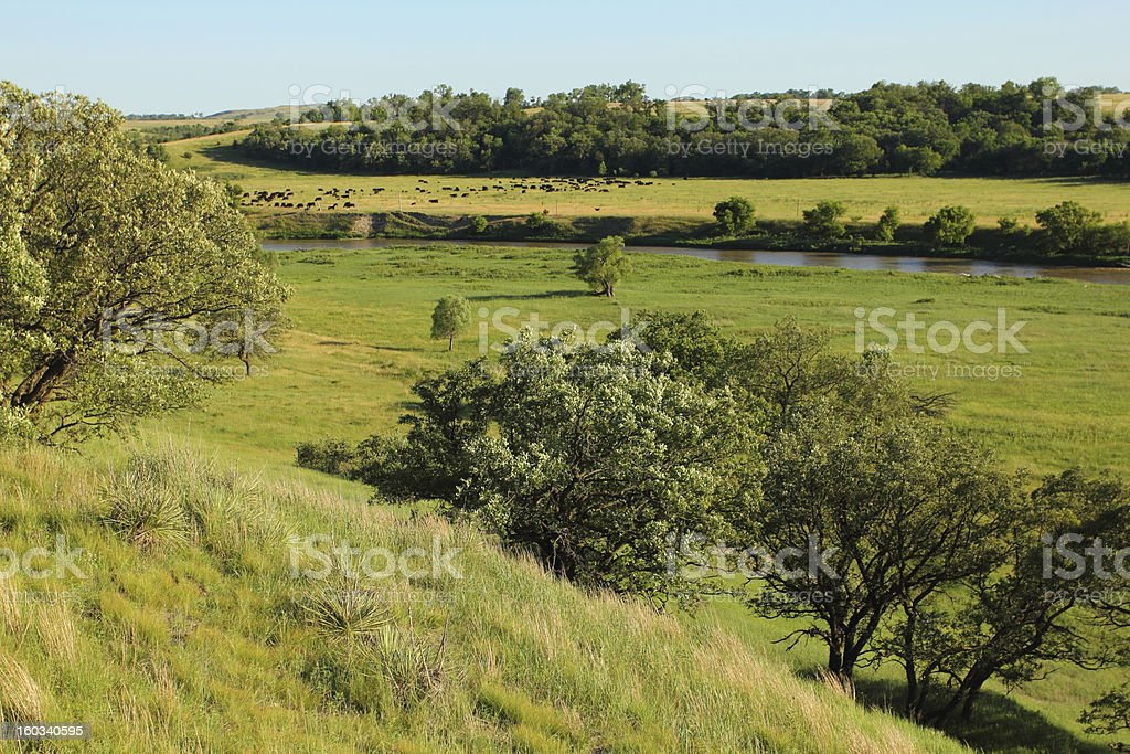 Scenic Ranch royalty-free stock photo