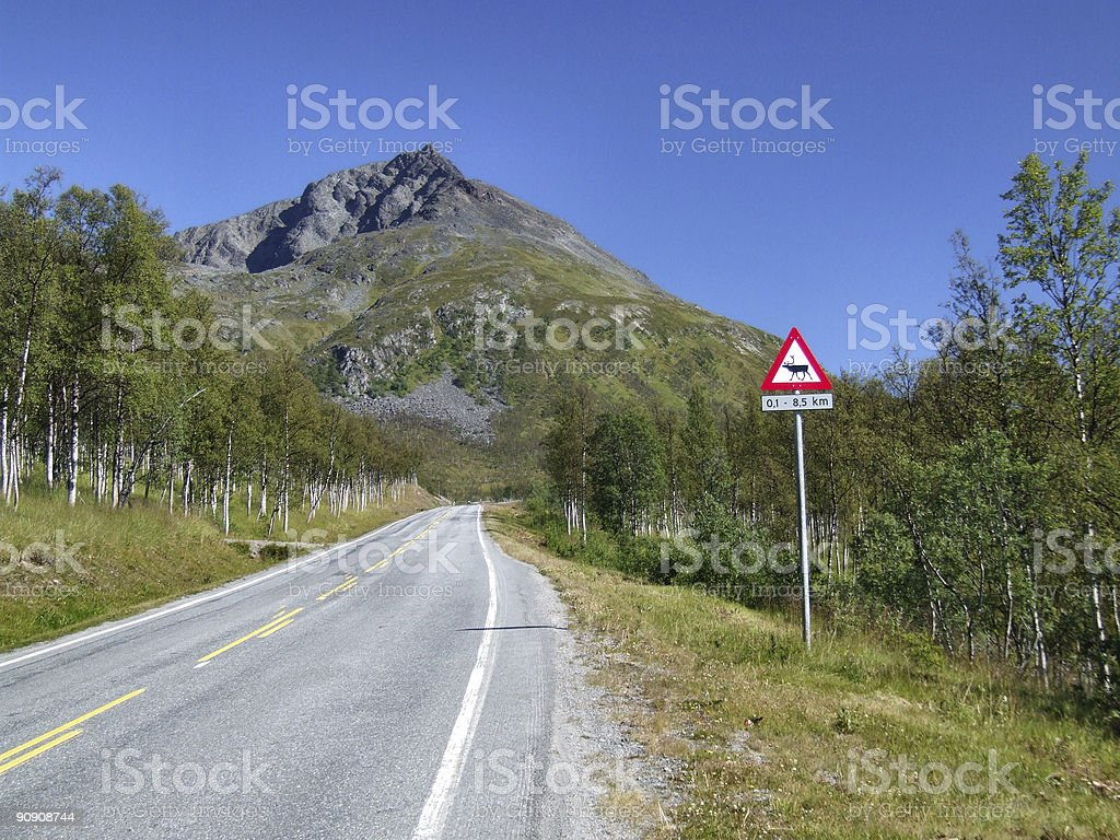 Scenic road and reindeer warning royalty-free stock photo