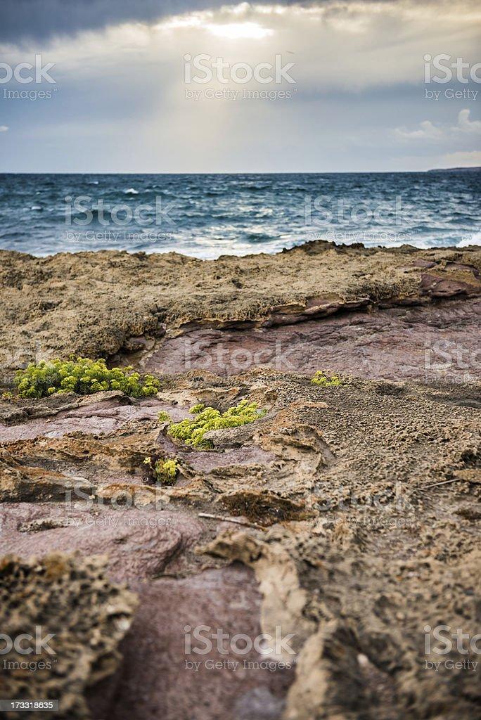 Scenic Sea Landscape royalty-free stock photo