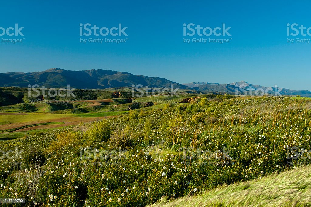 Scenic sunny valley stock photo