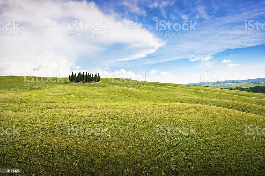 Scenic Tuscany landscape in Val d'Orcia, Italy royalty-free stock photo