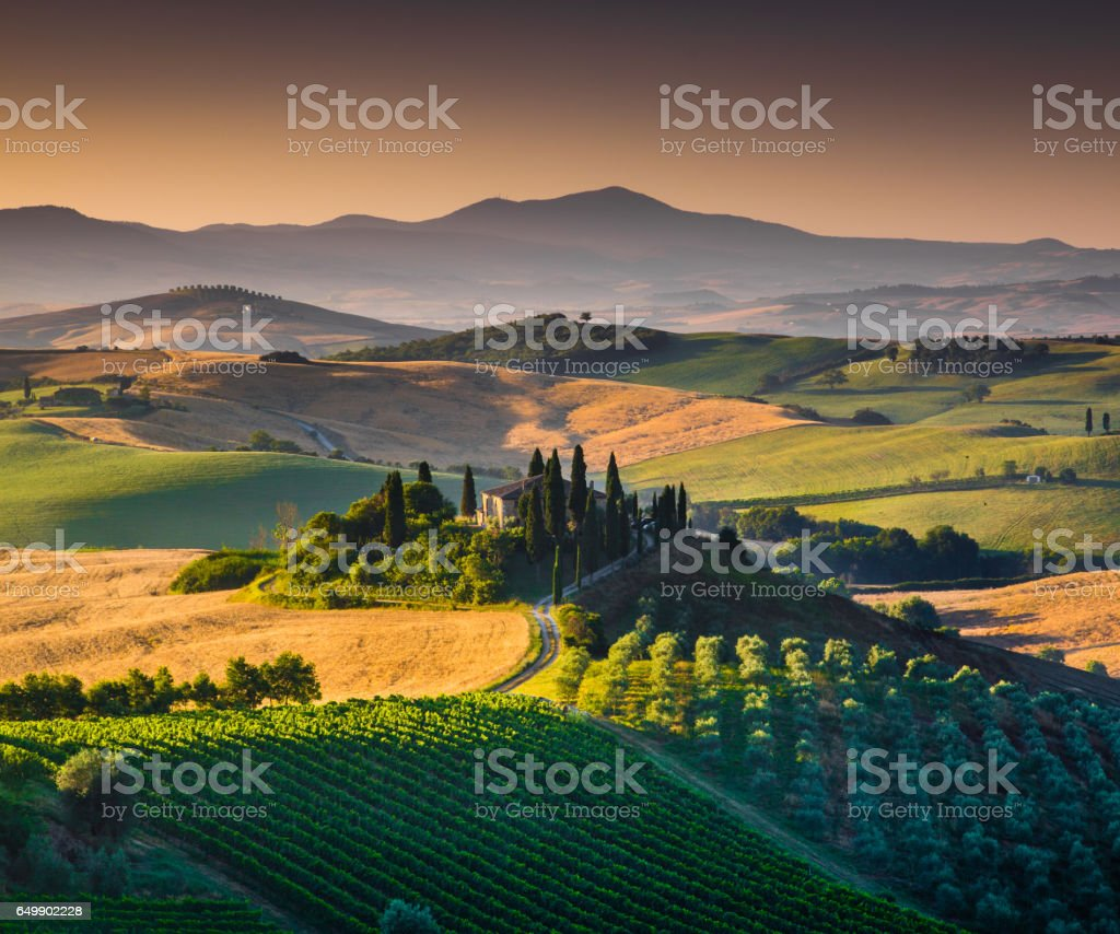 Scenic Tuscany landscape with rolling hills and valleys in golden morning light, Val d'Orcia, Italy stock photo