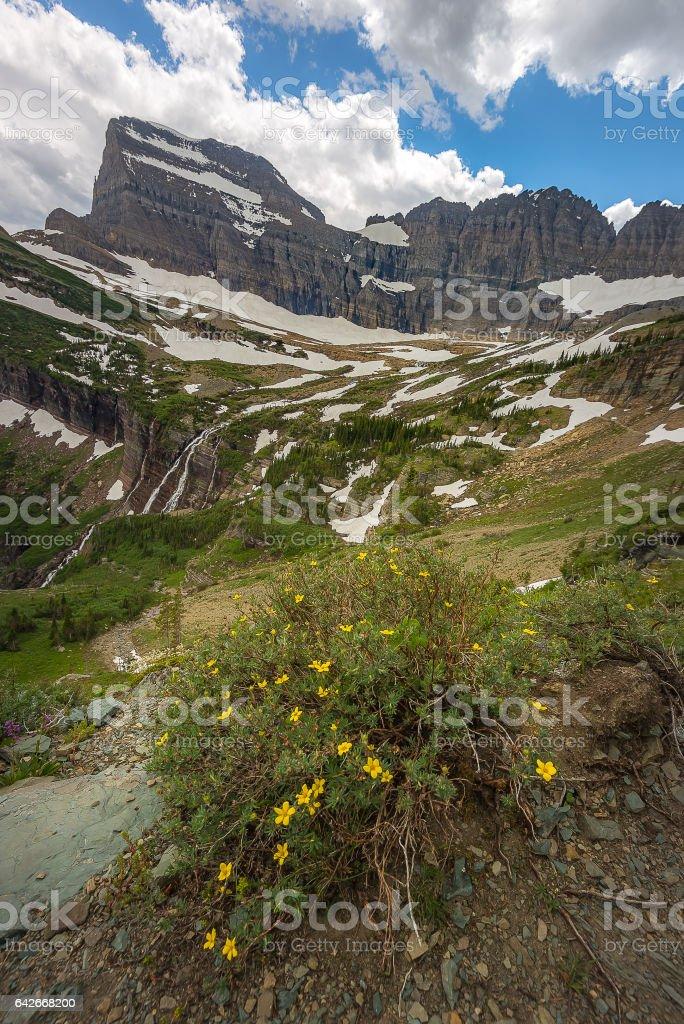 Scenic view in Glacier National Park stock photo