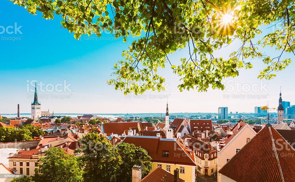 Scenic View Landscape Old City Town Tallinn In Estonia stock photo