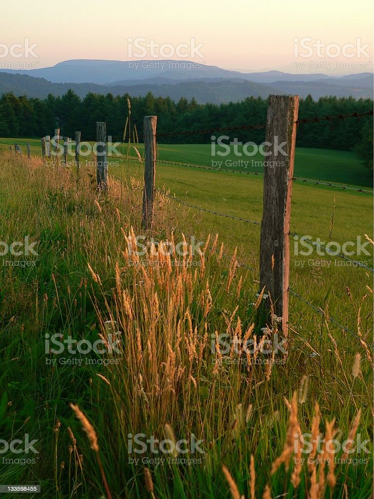 Scenic view of a barbed wire wood fence in lush green field stock photo