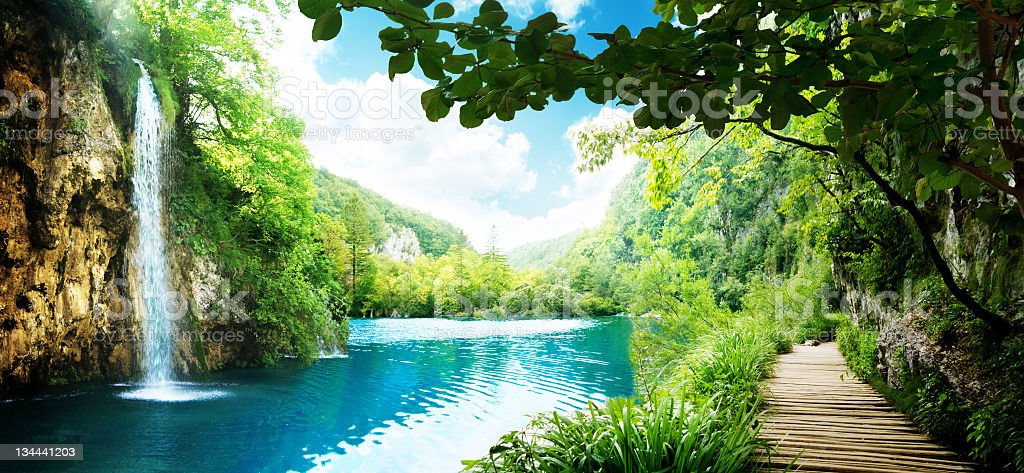 A scenic view of a waterfall in a deep forest landscape stock photo