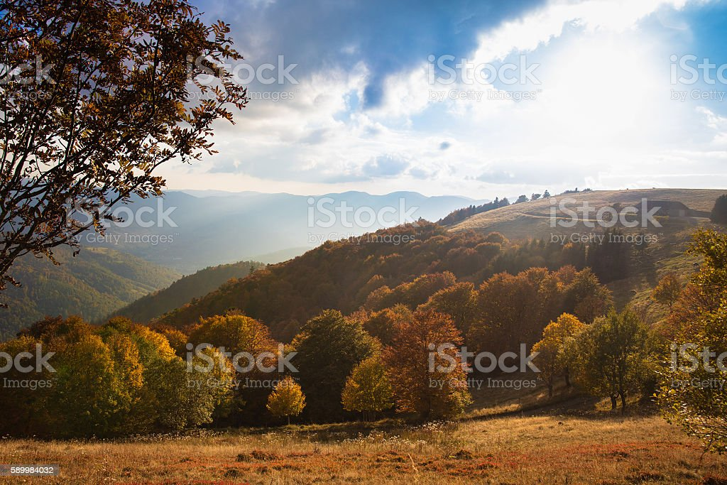 Scenic view of Alsace hills stock photo