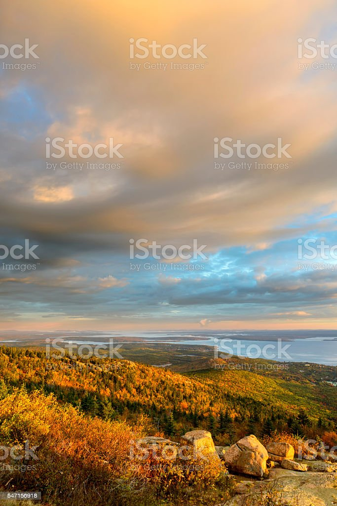 Scenic View of Fall Trees and Ocean Inlet stock photo