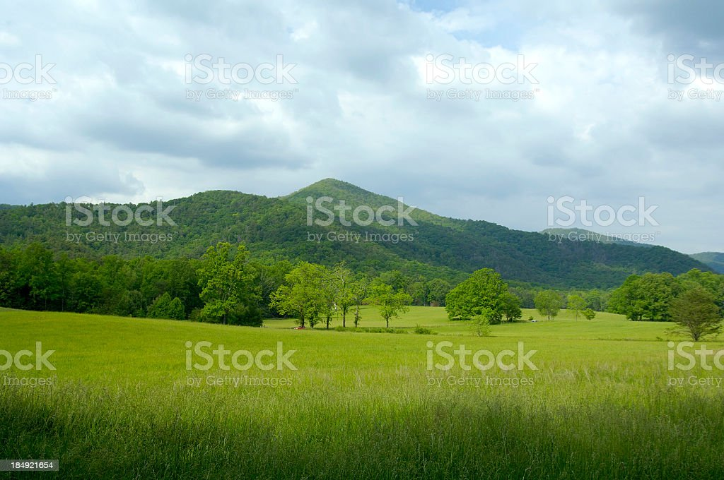 Scenic view of Great Smoky Mountains National Park stock photo
