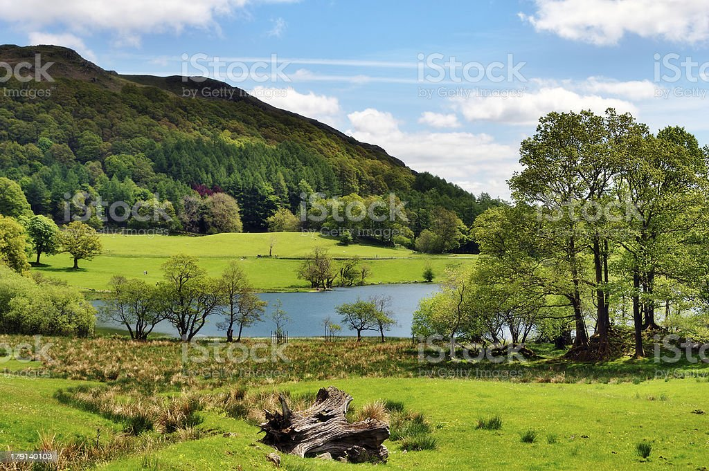 Scenic view of Loughrigg Tarn stock photo