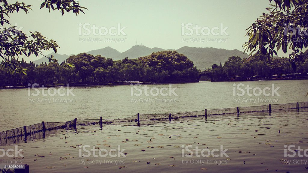 Scenic View of Nature stock photo