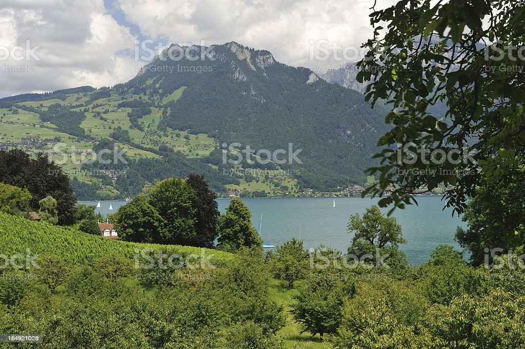 Scenic View of Spiez royalty-free stock photo