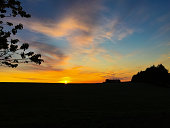 Scenic view of sunrise over field. Tree in silhouette.