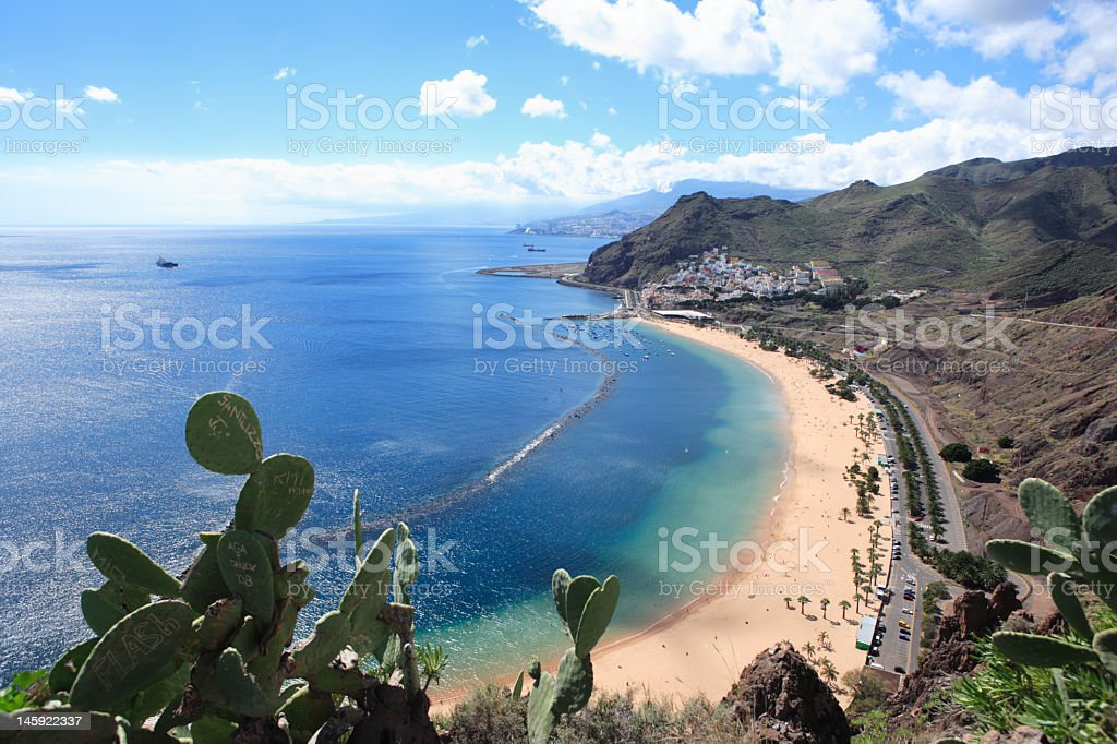 scenic view of Tenerife coast, Canary Islands, cactus in foreground stock photo