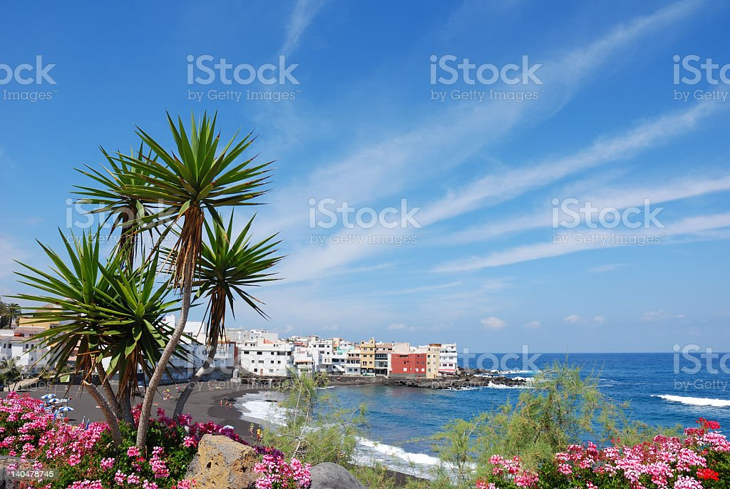 scenic view of Tenerife village and beach, tropical plants stock photo