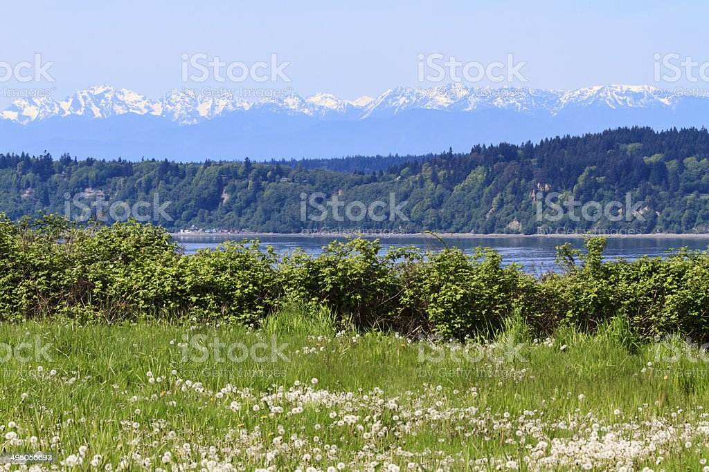 Scenic View of the Cascade Mountains stock photo