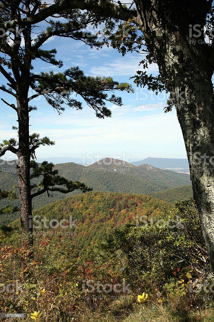 Scenic View Of The Shenandoah National Park royalty-free stock photo