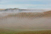 Scenic view of Tuscan fields and hills with fog